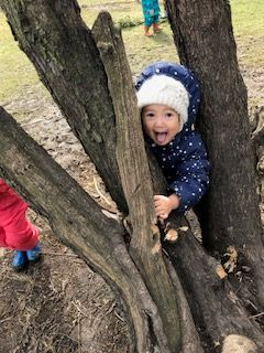 toddler in tree